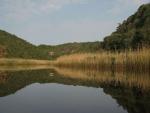 Noetzie-river-Wendy-Dewberry